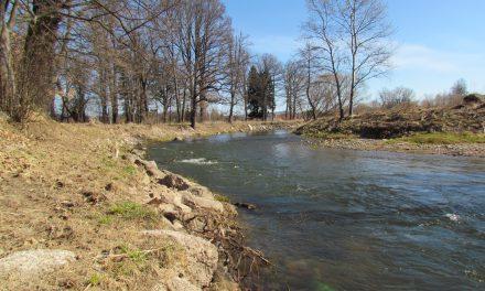 Ochrona wód i ekologia