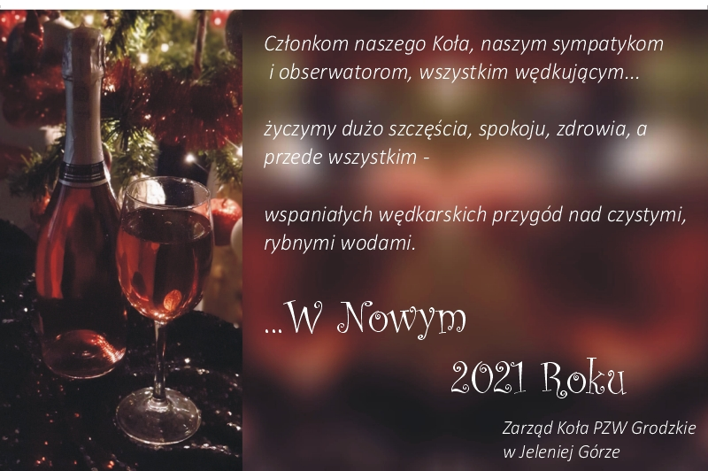 Wszystkiego najlepszego w Nowym 2021 Roku